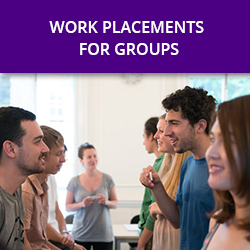 WORK PLACEMENTS FOR GROUPS